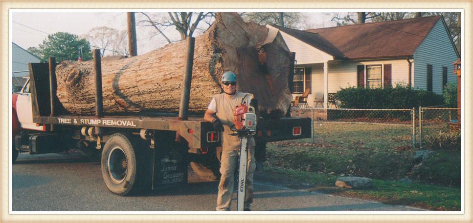 large-tree-removal-virginia-beach-va
